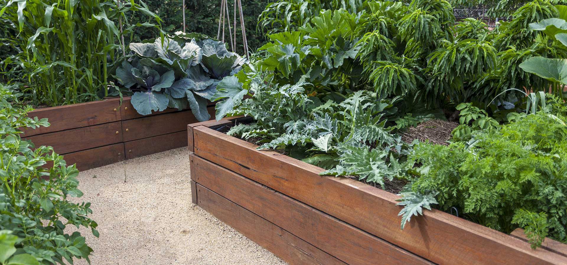 Adviezen voor de tuin